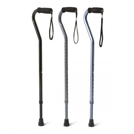 stylish canes